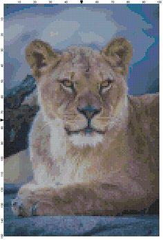 Cross Stitch Pattern African Lioness by theelegantstitchery