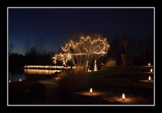 OP Arboretum Luminary Walk: This is usually held Thankgiving weekend and the 1 weekend of December.  Santa is at the train depot waiting for kids, and there's lot of great walking and lights as well as hot apple cider and live music.  There is a fee for entrance.  Bundle up and enjoy.  This event is stroller friendly!