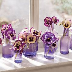 "Pretty pansies from ""all things girly and beautiful"""