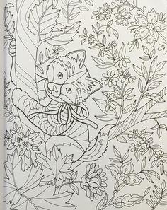 Amazon Color Super Cute Animals 0035313666476 Jane Maday Books