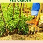 Spring In The Veg Garden – To Do List