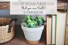 I shared this DIY succulent planter over on the blog & I'm pretty obsessed with it. These succulents were purchased at Hobby Lobby { for 50% off!} & sin…