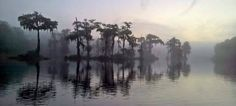 The Universal One Church is located in Carrabelle, Florida located within beautiful Franklin County.