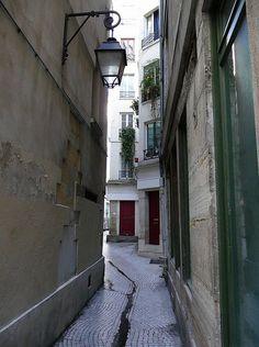 The petite rue de Paris, romantique à souhait, petit frisson au son d'un accordéon qui raisonne... Beaucoup de charme selon moi grâce aux balconnières débordant de vert dans le gris urbain.