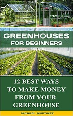 Greenhouses for Beginners: 12 Best Ways To Make Money From Your Greenhouse…