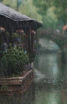 everyday a different color, beautiful gifs, soft goth, nature. Rainy Mood, Rainy Night, Rainy Weather, Rainy Day Photography, Rain Photography, White Photography, Sound Of Rain, Singing In The Rain, Rain Wallpapers