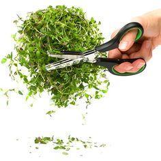 Klipp urtene i småbiter, i ett jafs!