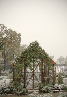It's good when your veg garden has enough structure to look cool even in winter.