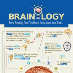 Brainology: 15 Intriguing Facts About Your Brain  - Infographic design