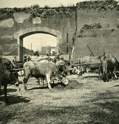 : Porta San Giovanni Anno: 1900 ca. Old Photographs, Old Photos, Best Cities In Europe, Umbria Italy, War Photography, Lost City, Vintage Italian, Ancient Rome, Roman Empire