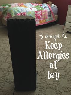 Keeping allergies at bay * The Typical Mom