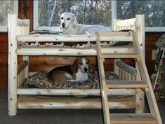 This one is super cool, isn't it? If you have two pets at home then this ladder bed is just perfect for your dogs.
