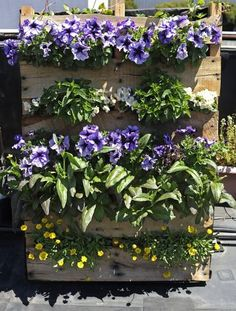 An assortment of flowers and edibles bloom in a shipping pallet turned vertical planter. Photo: Yue Wu, The Chronicle / SF