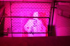 """""""John Wayne Gacy"""" is a mixed media painting that is a part of the series, """"The Choices Of Inner Conflict.""""  It was suspended 16' from the floor.  The piece was illuminated by multiple LED lights that changed patterns as original music/ audio recording where played for the audience."""