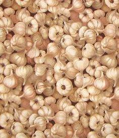 Garlic Fabric / Garlic Head On Brown Fabric / 6537  fabric Timeless Treasures  / Fat Quarter / 1 Yard Cut  / 1/2 Yard Cuts by SewWhatQuiltShop on Etsy