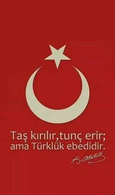 Ben Türk'üm Türk esir olmaz !!! Republic Of Turkey, Turkish Army, The Turk, Warrior Quotes, Ottoman Empire, Picture Quotes, Pictures