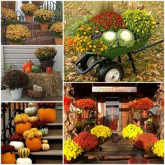 Design Of Outdoor Party Decorations Is Amazing Idea Fall Ideas Decoration