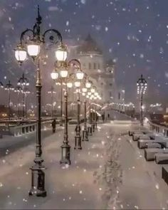 Merry Christmas Gif, Christmas Scenery, Winter Scenery, Christmas Music, Christmas Pictures, Christmas Greetings, Vintage Christmas, Christmas Videos, White Christmas Snow