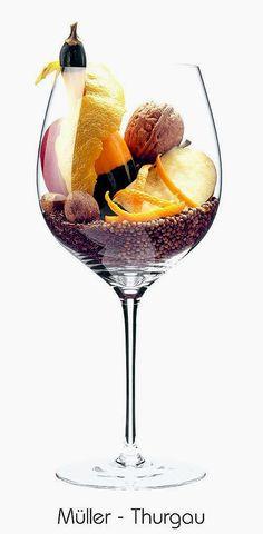Müller-Thurgau (white) | Aromas of apple, walnut, lemon peel, orange peel, almond, pumpkin, caraway, coriander | Thurgau, Switzerland