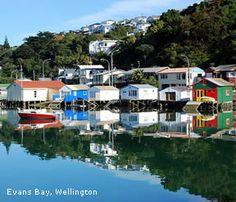 Evans Bay boatsheds, Wellington, North Island, New Zealand Boat Shed, Wellington New Zealand, Bill Evans, State Of Arizona, Kiwiana, Draw On Photos, Online Travel, Cool Countries, British Isles