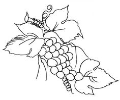 Desenhos para colorir para imprimir : Natureza - Fruta - Maçã numéro 631401
