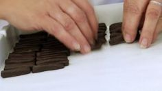 The Puyricard Chocolate Factory, Gourmet Excellence