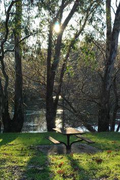 Murray River at sunset - Albury/Wodonga