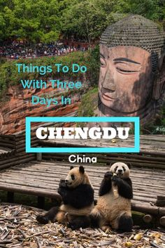 China is a big country. Not many travellers head to the west side. Do put Chengdu on your list of places to see in China. There is so much to do here. You could easily spend 3 - 4 days touring around the area. Check out our list of best things to do in Chengdu. #china #offthebeatenpath #westernchina