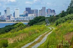 spectacle island - Google Search