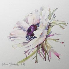 Вокруг столько красоты... #art #artist #paint #painting #watercolor #watercolorpainting #acuarela #aquarelle #aquarell #акварель #этюд #topcreator #artstagram #process_of_creativity #worldofartists #waterblog #art_we_inspire #art_collective #artcollective #arts_gallery #arts_help #artworks_artist #artfido #art_sanity #skrien #inspiring_watercolors #fleurs #sennelier #winsorandnewton by olena.duchene