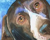 German Shorthaired Pointer Art Print of Original Watercolor Painting - 8x10
