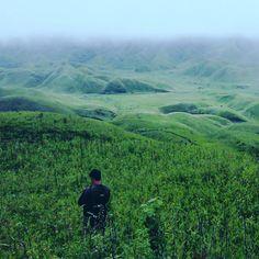 Follow me down to the valley below . . . . #dzukou #dzukouvalley #nagaland #whereisnortheast #northeast #northeastindia #kohima #trek #hiking #trekkie #hills #hillsandvalleys #flowers #lily #mist #travels #igtravel #travelgram #camping http://misstagram.com/ipost/1555134458024404739/?code=BWU8ozUg6cD