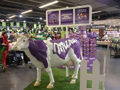 Adopte une vache par Milka - Théatralisation en magasin
