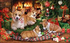 Corgi - Fireside Christmas by Margaret Sweeney Z