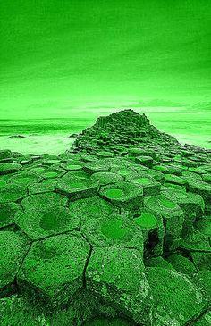 Giant's Causeway in Green, Northern Ireland