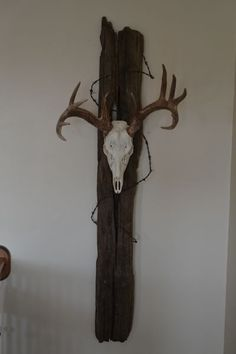 Something to do with those European mounts my hubby has