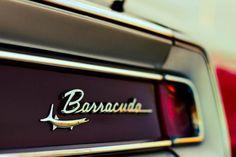 Plymouth Barracuda emblem