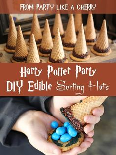 DIY Harry Potter Party - Party Like a Cherry
