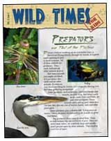 Check out this free copy of Wild Times magazine for kids on predators. Includes a food chain game and animal trading cards.