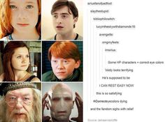 Harry Potter characters/cast with correct eye colors. Harry Potter Universal, Harry Potter Fandom, Harry Potter World, Harry Potter Memes, Potter Facts, Beatles, No Muggles, Halloween Contacts, Yer A Wizard Harry
