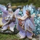 Miniature Lilac Fairy