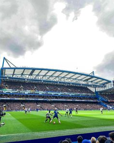 Chelsea Stadium, Chelsea Fc, England Football, Stamford Bridge, Football Boys, Affair, Soccer, Colour, Sports