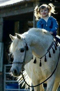 Sweet Gentle Arabian