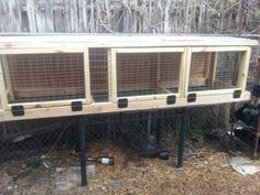 Adventures of a Homesteading City Girl: Weekend Project: Building a Rabbit Hutch Raising Rabbits For Meat, Meat Rabbits, Rabbit Farm, Rabbit Cages, Rabbit Hole, Rabbit Hutch Plans, Rabbit Hutches, Free Rabbits, Bunny Hutch