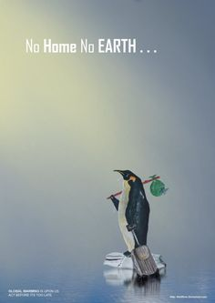 No home, no Earth Global Warming Poster, Global Warming Climate Change, Save Mother Earth, Save Our Earth, Earth 3, Save Wildlife, Simple Poster, Environmental Issues, Environmental Protection Poster