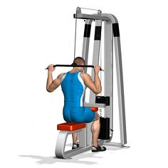 The pull-down machine and its variations focuses on the width and thickness of the back. The exercise involves as the traps and the posterior deltoid as secondary muscles, furthermore the forearm and biceps as additional muscles.