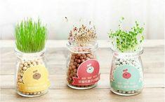 jar hydroponic planter - Google Search Grow Kit, Hydroponics, Planter Pots, Jar, Table Decorations, Google Search, Home Decor, Decoration Home, Room Decor