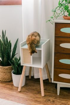 Inspiring Ikea Hack Ideas That Suitable For Your Cats Ikea Hacks For Cats, Cat Hacks, Diy Furniture Hacks, Ikea Furniture, Modern Furniture, Furniture Online, Apartment Decorating On A Budget, Rental Decorating, Ikea Cat
