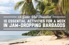 10 essential activities for a week in jaw dropping Barbados