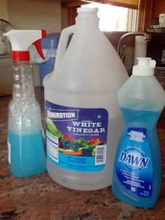 My Great Challenge: White Vinegar + Dawn in the kitchen